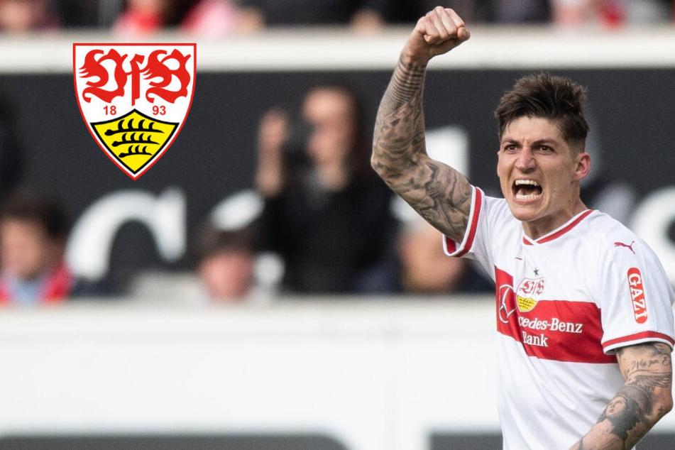 Rückkehr zum VfB? Darum erteilt Steven Zuber eine Absage