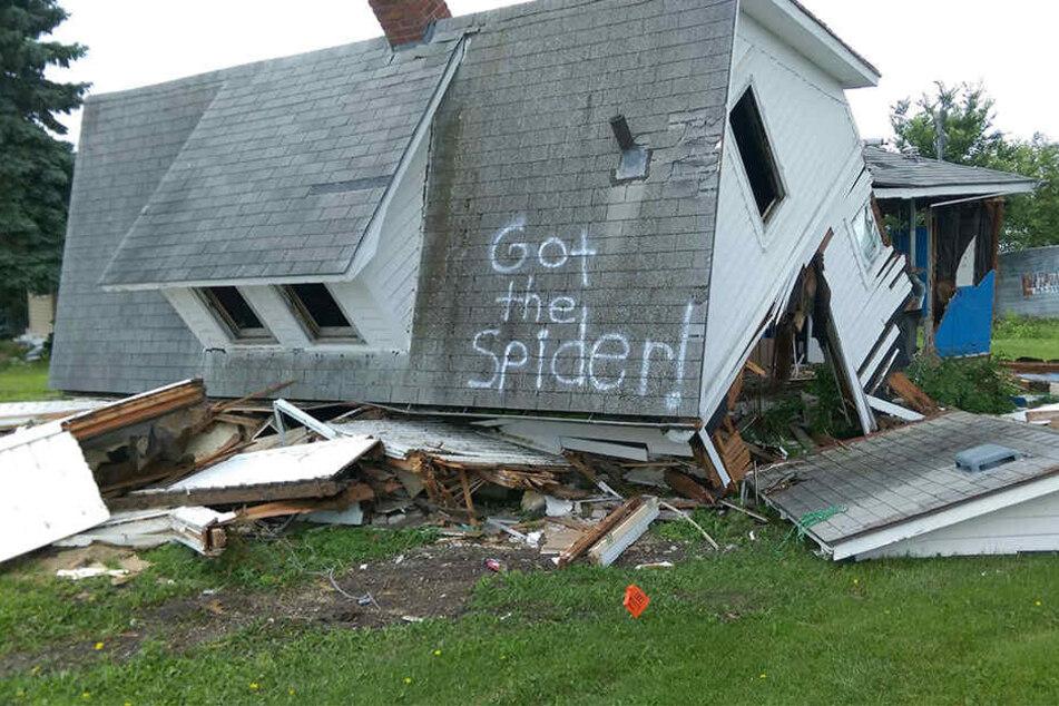 """""""Hab die Spinne!"""" Dieses Foto brachte schon zehntausende User zum Lachen."""