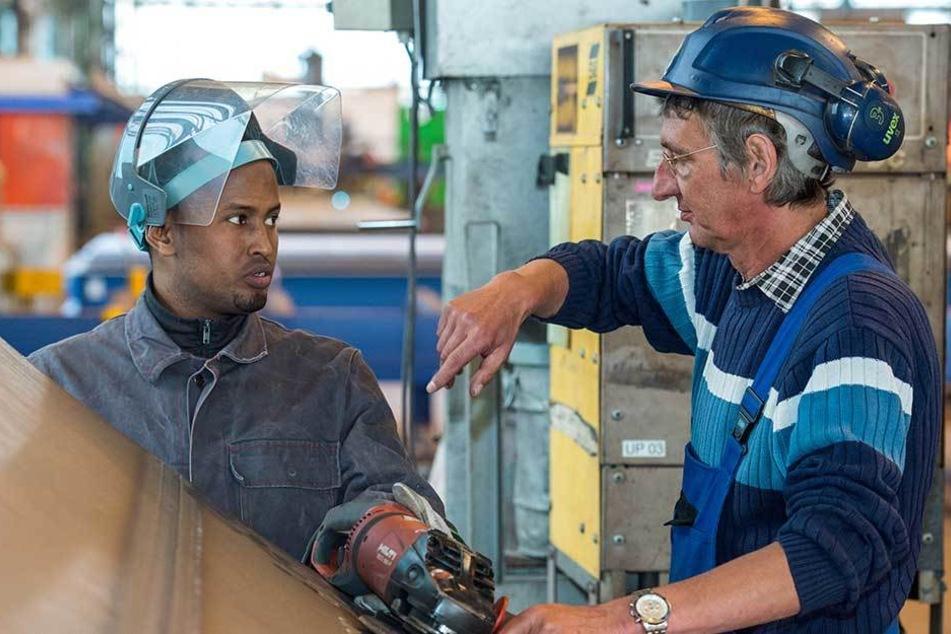 Abgelehnte Asylbewerber die einen Job haben, sollen einen sicheren Aufenthaltsstatus bekommen (Symbolfoto).