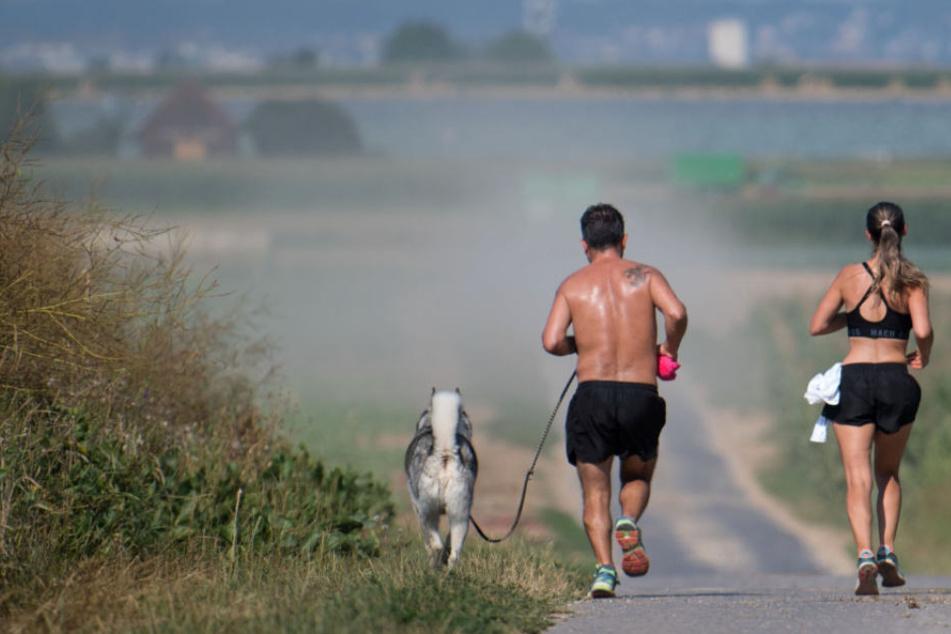 Empfindliche Menschen sollten auf Sport bei erhöhten Ozonwerten verzichten.
