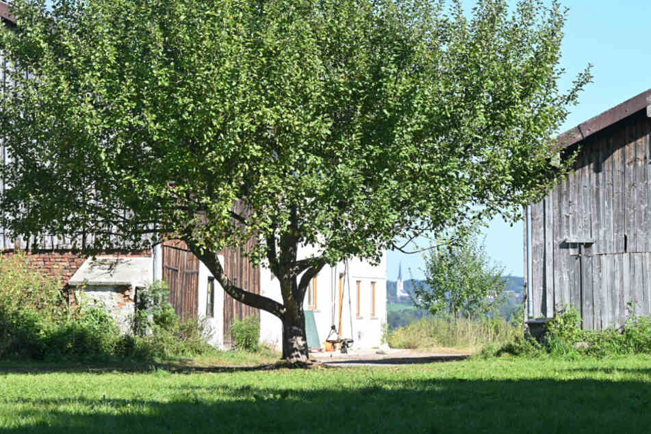 Auf diesem Hof war nach Angaben der Behörden die nicht genehmigte Schule untergebracht.