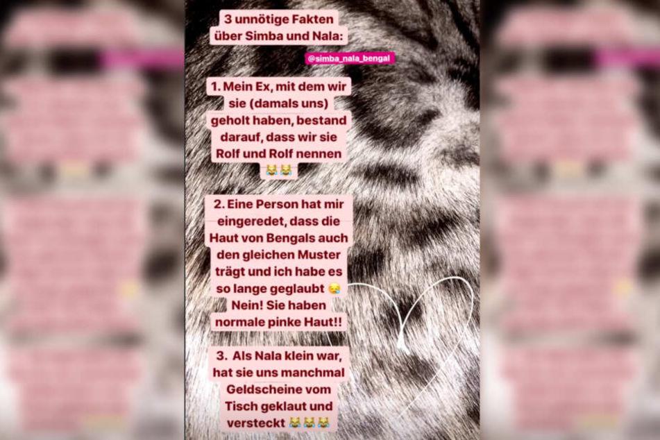 Der Screenshot zeigt die Instagram-Story von Anastasiya Avilova.