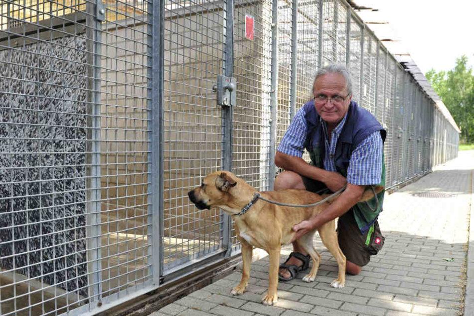 Tierheim-Chef Jens von Lienen (59) warnt davor, sich Hunde aus dem Urlaub mitzubringen.Tierheim-Chef Jens von Lienen (59) warnt davor, sich Hunde aus dem Urlaub mitzubringen.