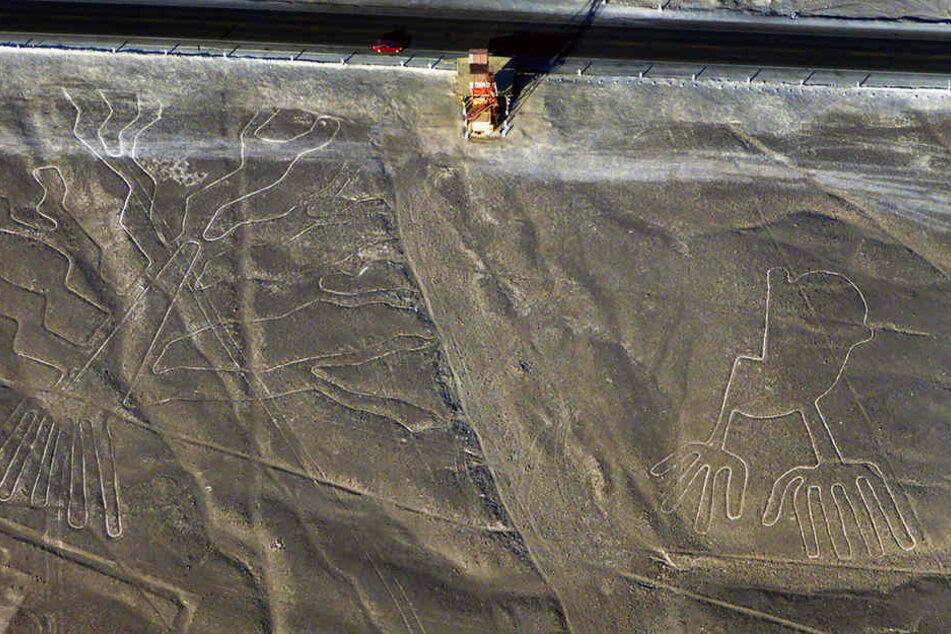 Die weltberühmten Nazca-Linien wurden von einem Laster beschädigt.