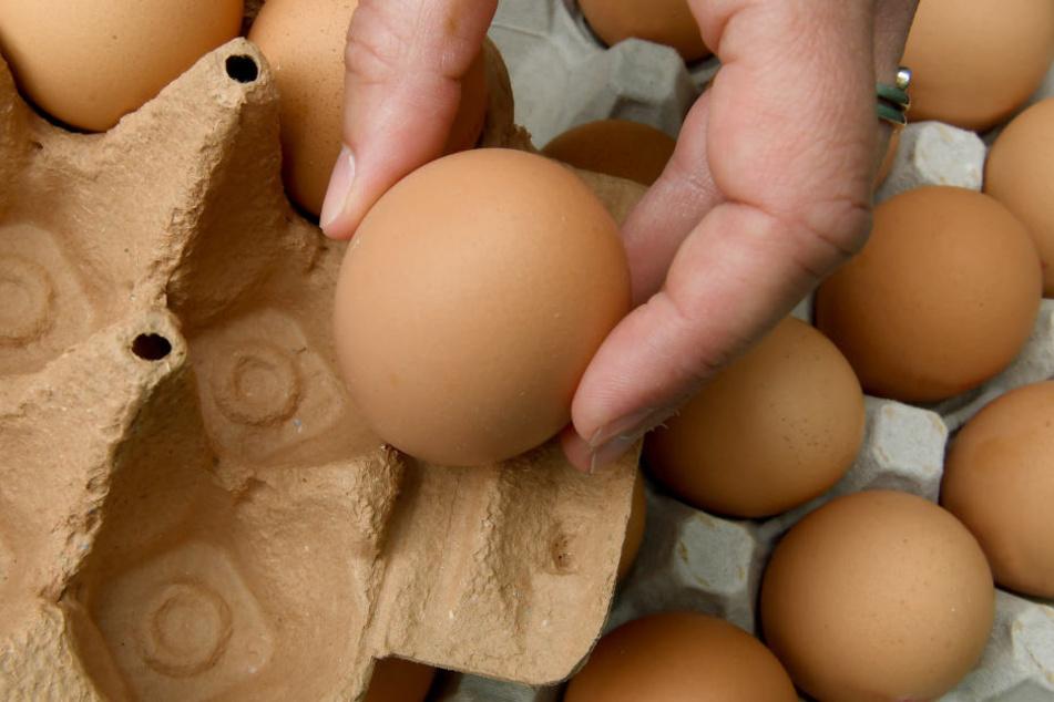 In Bio-Eiern der Firma Eifrisch wurden Salmonellen nachgewiesen. Deshalb gilt ein bundesweiter Rückruf in mehreren Supermarktketten.
