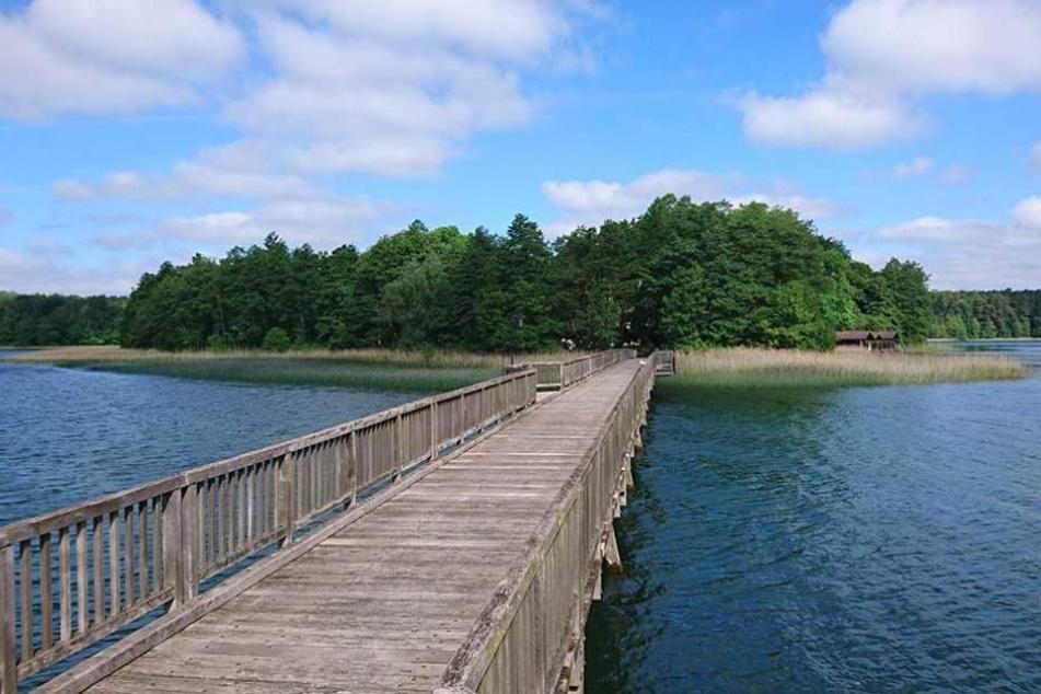 """Eine Holzbrücke verbindet die """"Herzinsel"""" im Brückentinsee bei Dabelow (Mecklenburg-Vorpommern) mit dem Festland."""