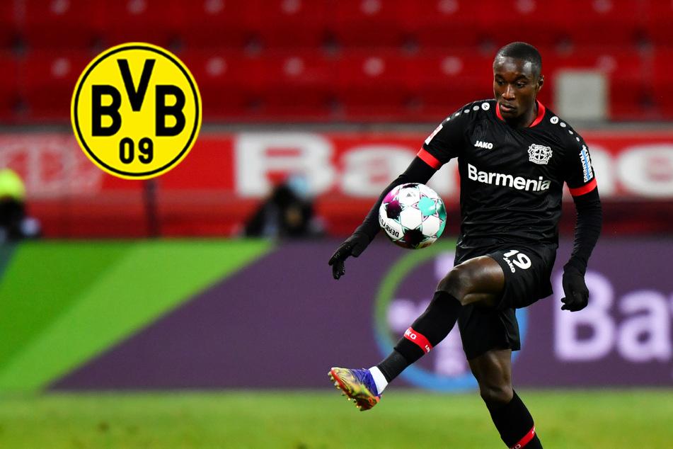 BVB nach Champions-League-Quali auf der Jagd: Krallt sich Dortmund zwei Mega-Talente?