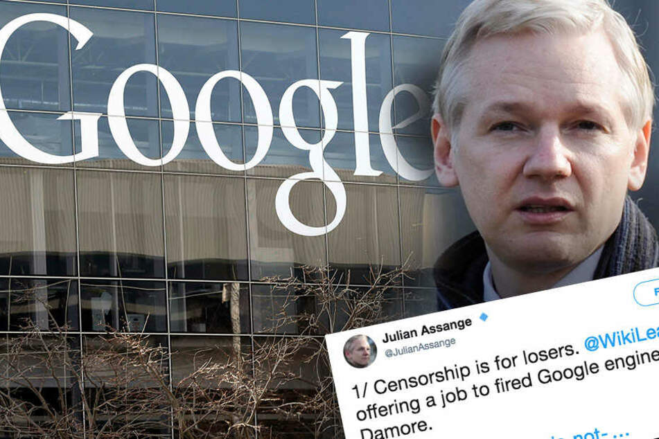 Google feuert Mitarbeiter wegen Manifest gegen Frauen: Dann bekommt er ein Jobangebot...