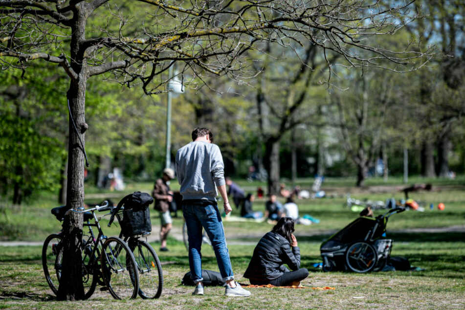 Menschen sitzen bei sonnigem Wetter auf der Wiese des Volksparks Hasenheide.