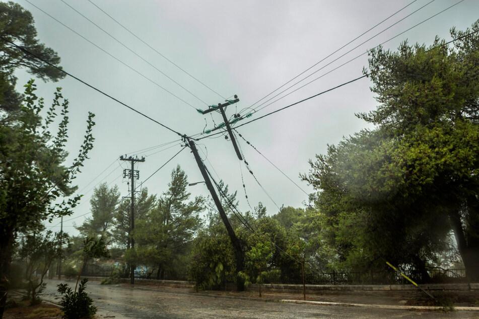 Bäume beschädigten die Strom- und Telekommunikationsleitungen in Kefalonia.