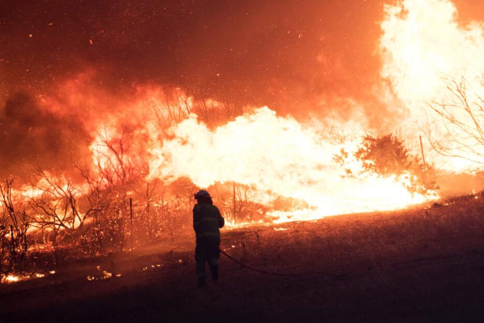 Feuer-Tornado wirbelt Feuerwehr-Lkw hoch: Fahrer tot