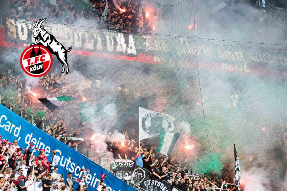 12 Verletzte durch Böller: Geringe Strafe für 1. FC Köln verhängt