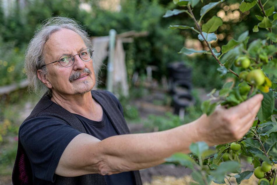 Manfred Hastedt (62), Leiter des Umweltzentrums, sieht im Klimawandel eine große Herausforderung für das Grün.