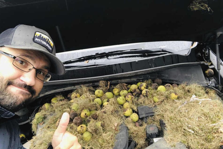 Chris Persic mit den Walnüssen in der Motorhaube.