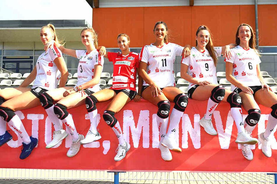 Sechs der sieben DSC-Neuzugänge. Im Sonnenschein von links: Laura de Zwart, Emma Cyris, Lenka Dürr, Milica Kubura, Lucija Mlinar und Kadie Rolfzen