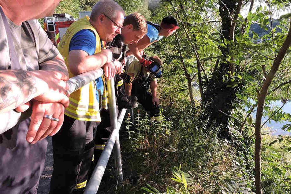 Mit Wärmebildkameras versuchten die Rettungskräfte, das verängstigte Tier am Muldeufer zu finden.