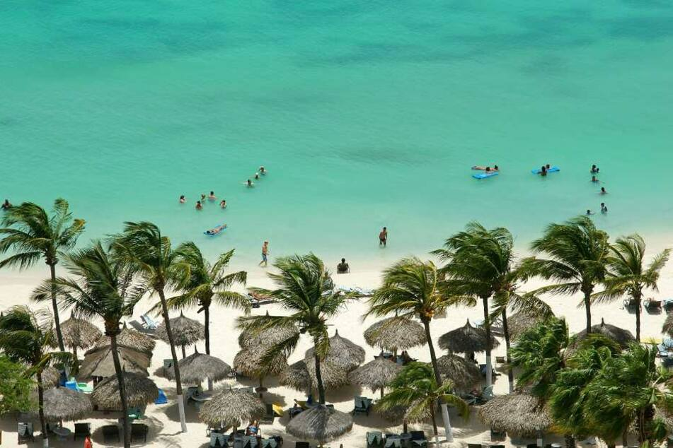 Aruba: das sind Palmen, weißer Strand und türkisfarbenes Meer.