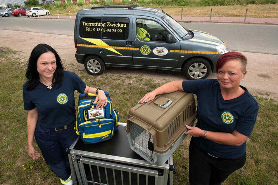 Freuen sich über das neu erwachte Interesse der Zwickauer für die Rettung von Tieren: Eileen Kuhn (44, rechts) und ihre Mitstreiter von der Tierrettung.