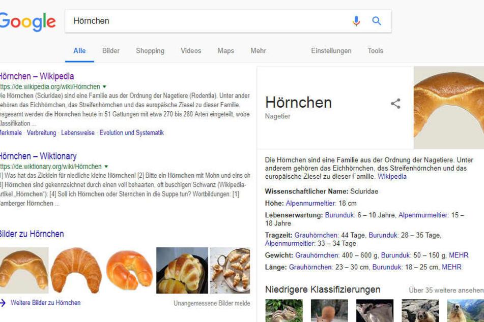Google macht aus dem Gebäck kurzerhand ein Nagetier.