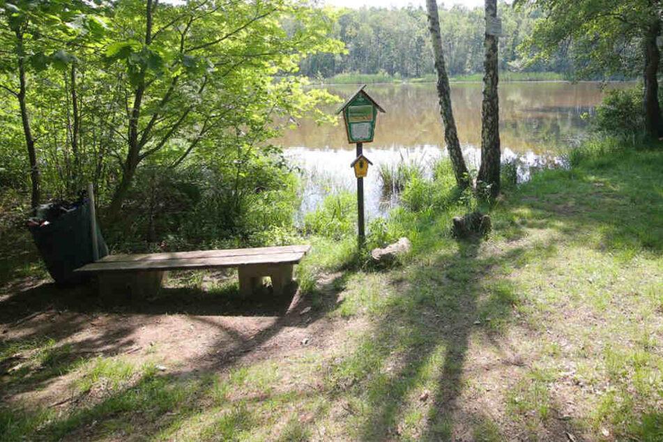 In einem Wald in der Nähe von Weinböhla fanden die Beamten die Leiche.