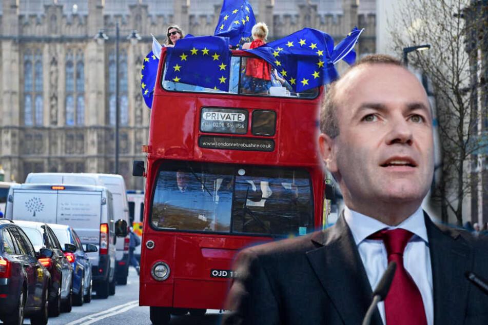 Europa-Politiker schlägt Neu-Abstimmung für Großbritannien vor