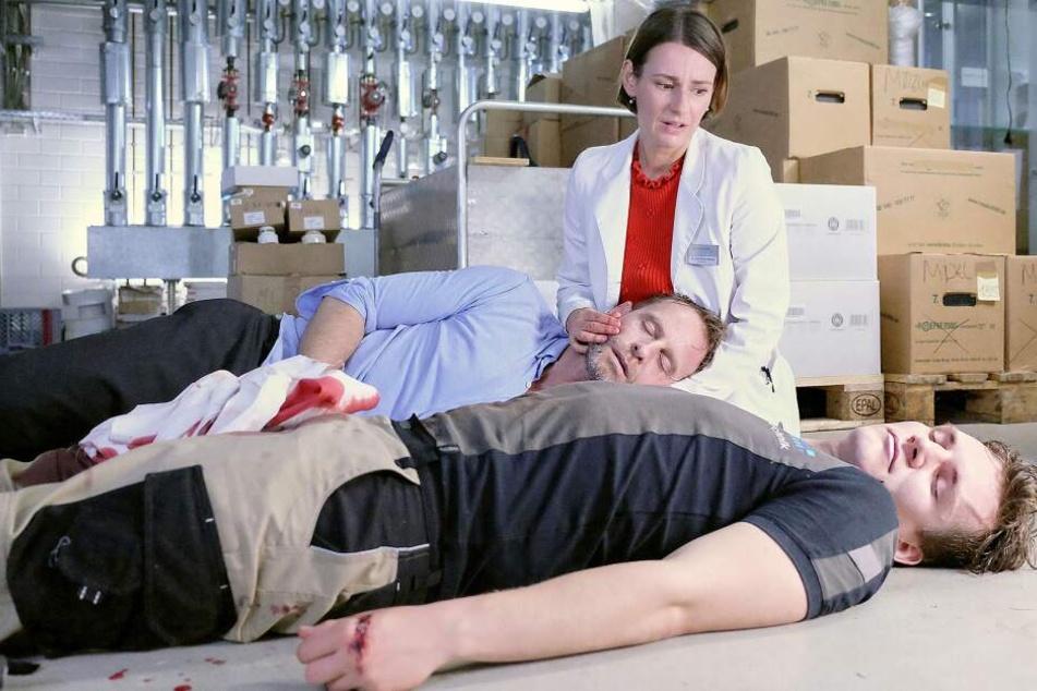 Lebensgefahr! Nach einer Bluttransfusion von Mensch zu Mensch ist auch Kai Hoffmanns Zustand kritisch. Maria Weber ist überfordert.