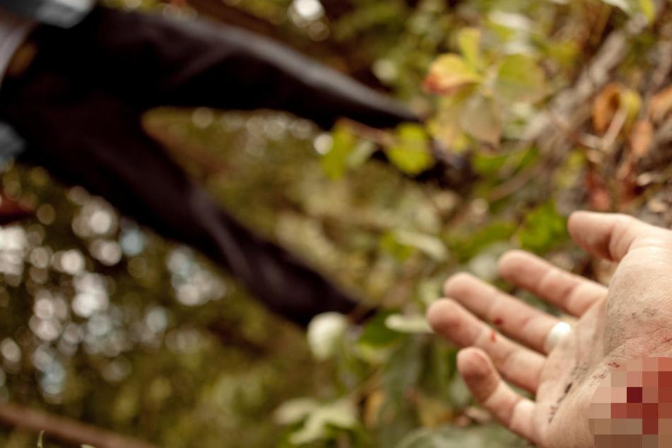 Fünf Frauen von Angreifern in Wald verschleppt und stundenlang vergewaltigt