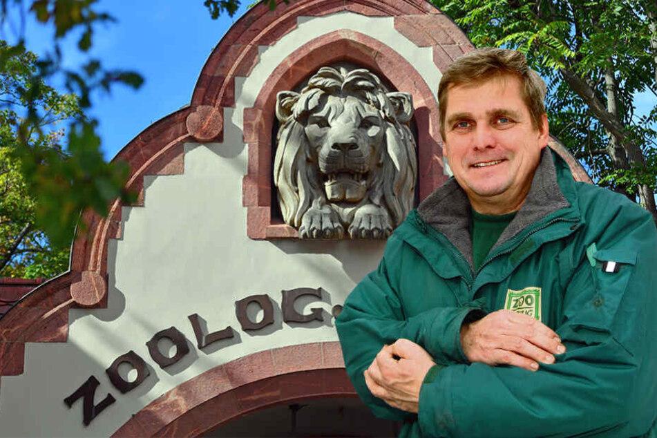 Für ihn war es auch Neuland: Zoo-Tierarzt Dr. Andreas Bernhard operierte den Elefant gemeinsam mit einer Pferde-Chirurgin der Uni-Tierklinik Leipzig.