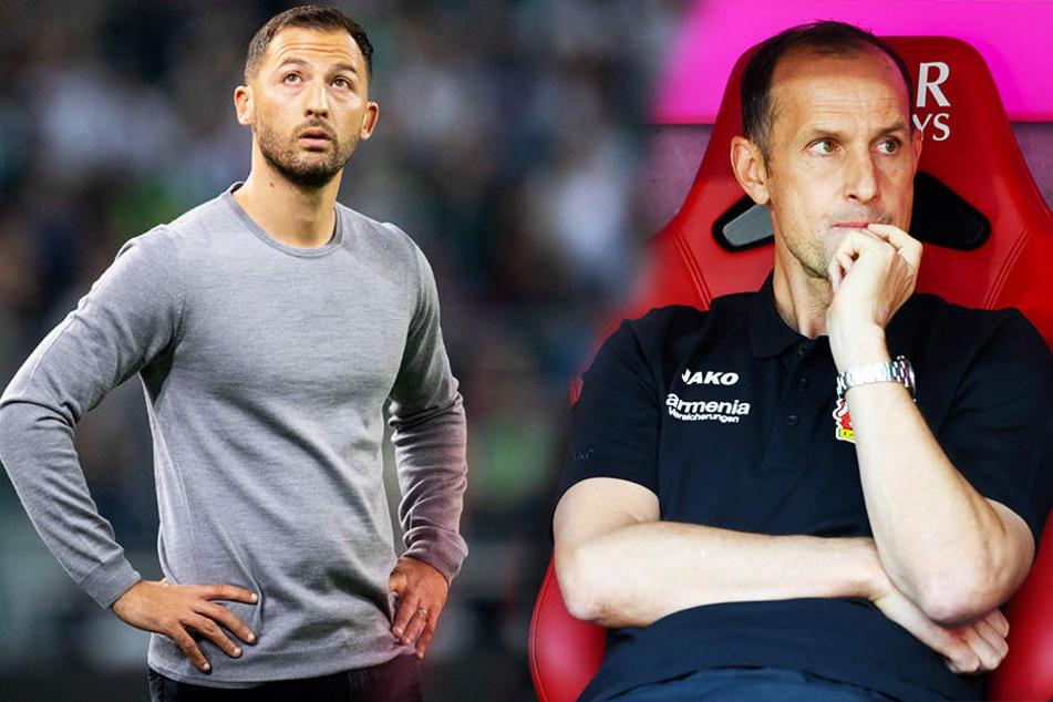 Stehen schon nach drei Spieltagen im kritischen Fokus der Medien: Schalkes Trainer Domenico Tedesco (l.) und Leverkusens Coach Heiko Herrlich (r.).