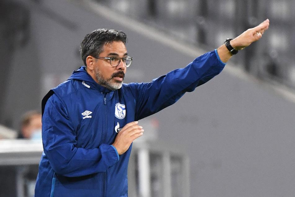 Der FC Schalke 04 hofft im Heimspiel gegen Werder Bremen auf die Unterstützung der Fans.