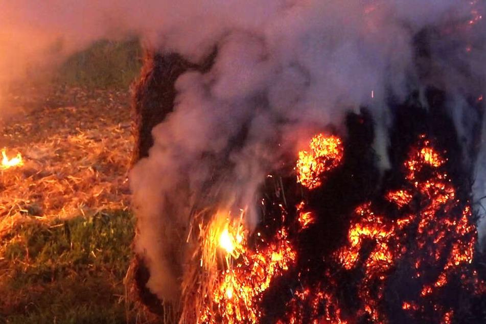 Die Brandursache ist aktuell noch völlig unklar.