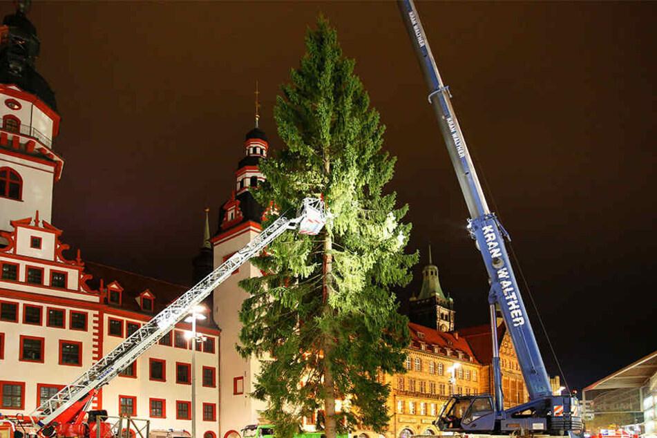 Der Letzte Weihnachtsbaum.Ist Das Der Letzte Große Weihnachtsbaum Für Chemnitz Tag24