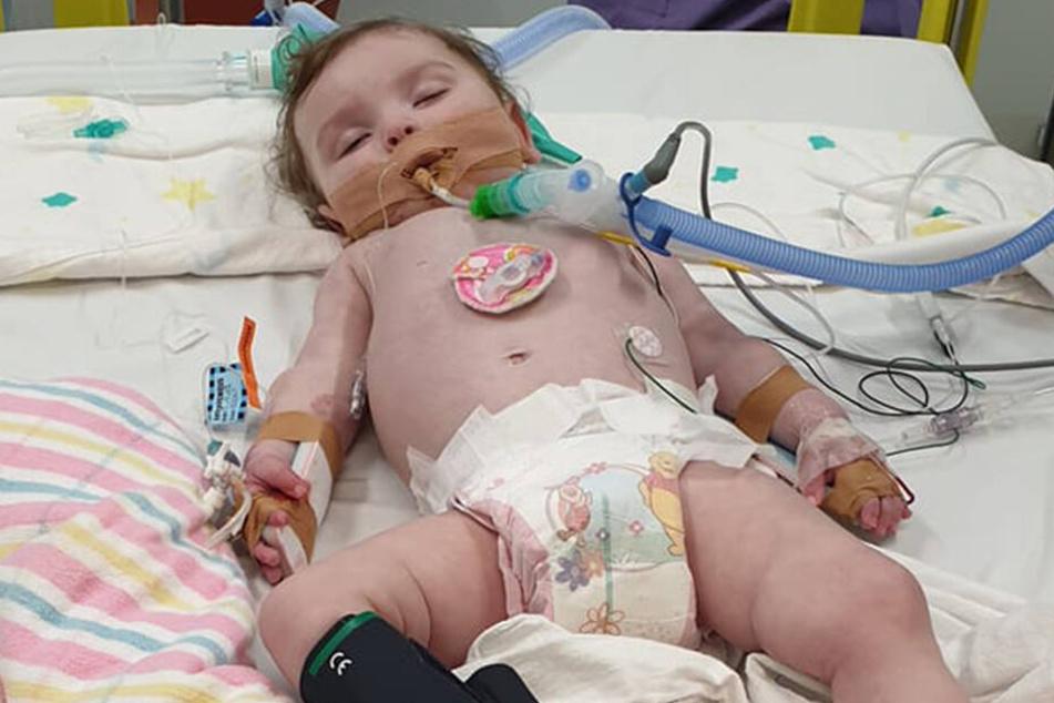 Die 11 Monate alte Tochter liegt im Sterben.
