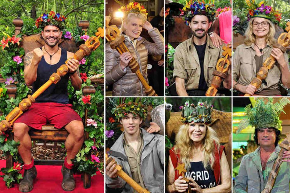 Sie alle trugen die Dschungel-Krone schon.