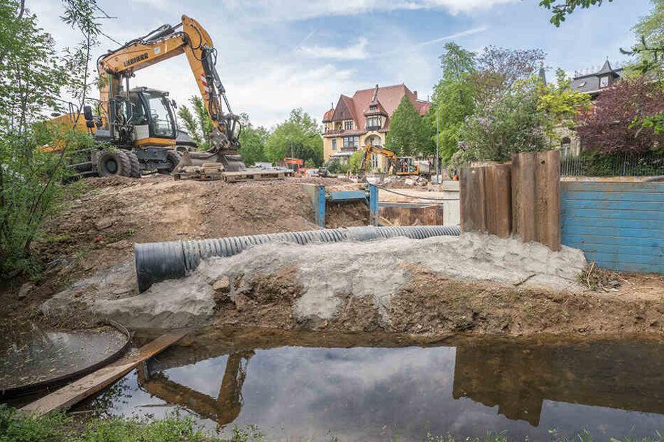 Der Kaitzbach ist momentan fast ausgetrocknet, eigentlich fließt er während der Bauarbeiten durch das schwarze Rohr.