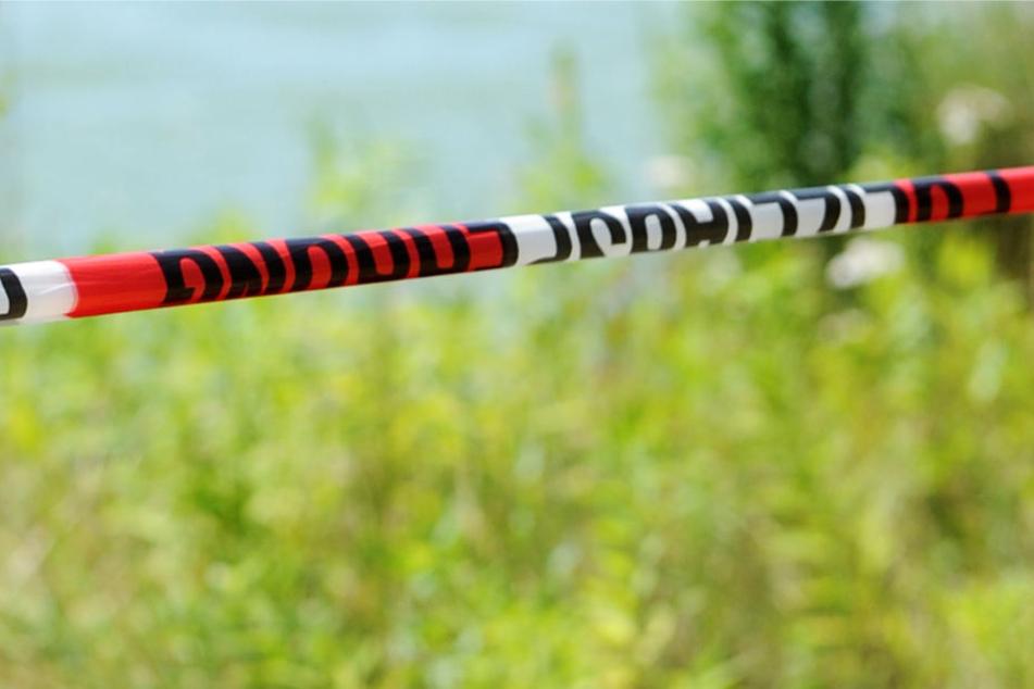 Die tote Frau wurde im großen Teich des Kurparks gefunden (Symbolbild).