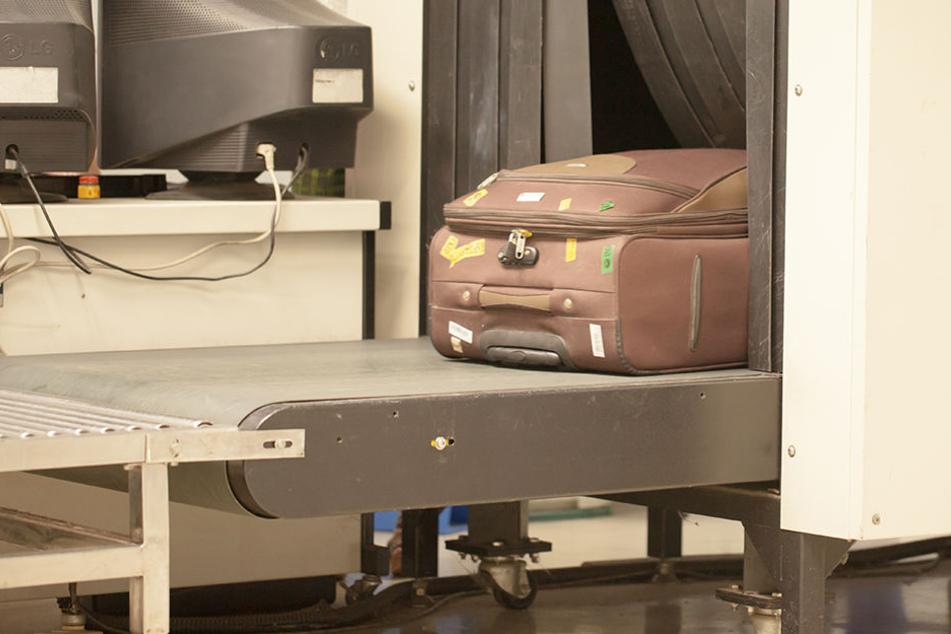 An einem Moskauer Flughafen ist ein Flugpassagier mit 20 Schlangen im Handgepäck aus dem Verkehr gezogen worden. (Symbolbild)