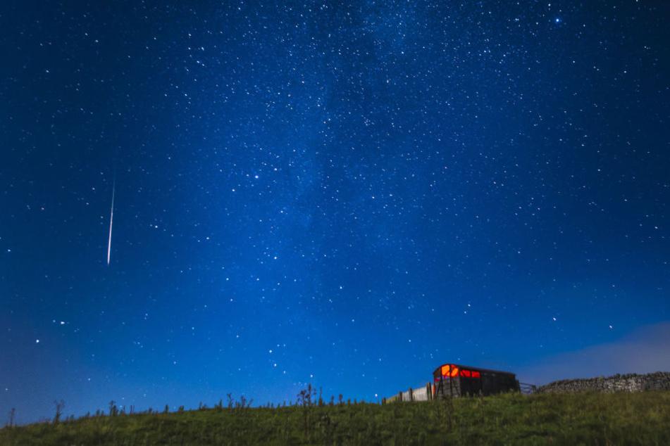 In der Nacht zum Samstag kann man Dutzende Sternschnuppen am Himmel sehen.