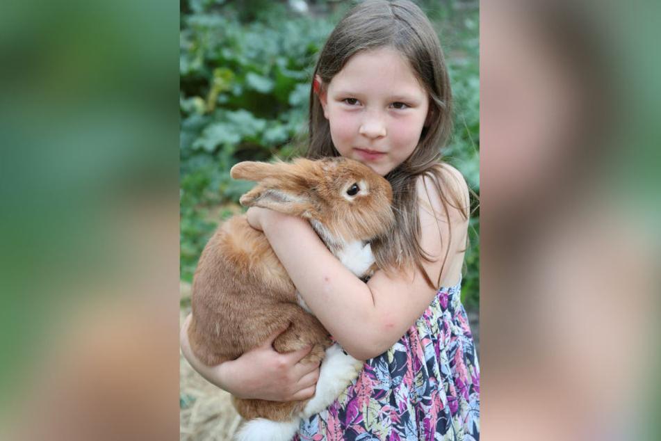 Töchterchen Tamara (8) mit einem süßen Fellknäuel von Karnickel. Die Adams züchten auch seltene Haustierrassen.