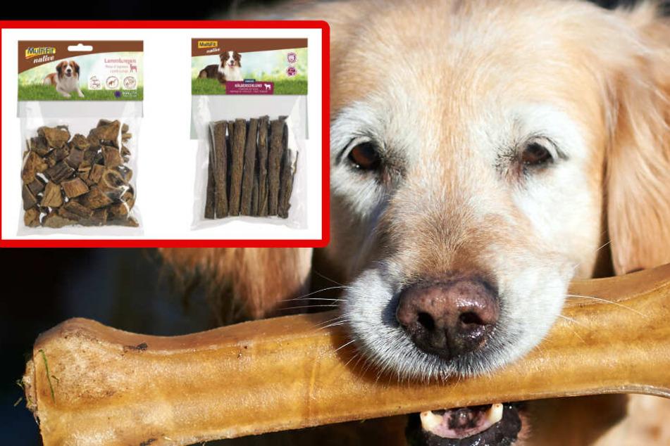 Massiver Rückruf bei Fressnapf: Diese Hunde-Produkte können gefährlich sein!
