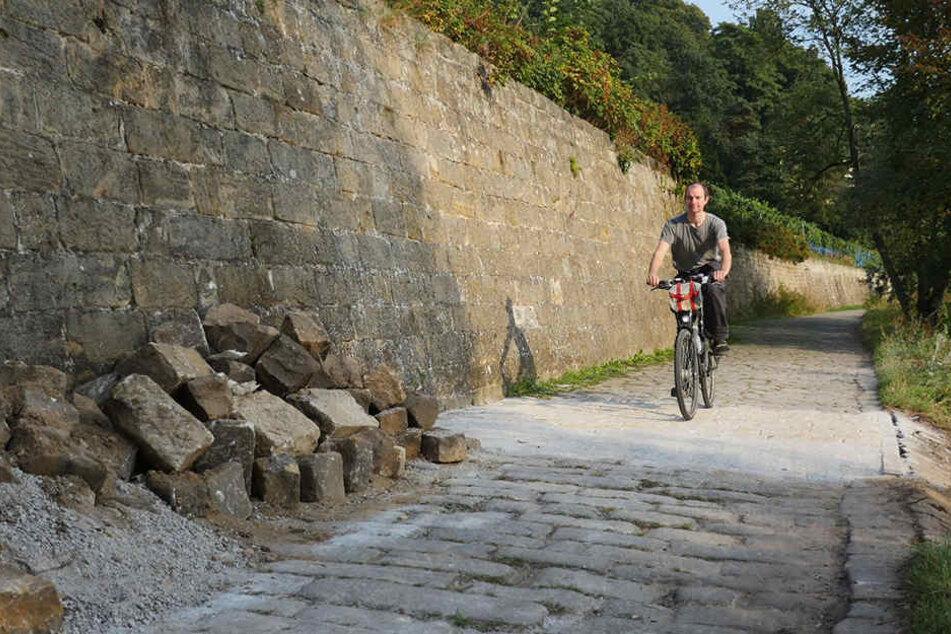 Frisch gepflastert, aber der Elberadweg östlich des Körnerplatzes ist  und bleibt eine Holperpiste.