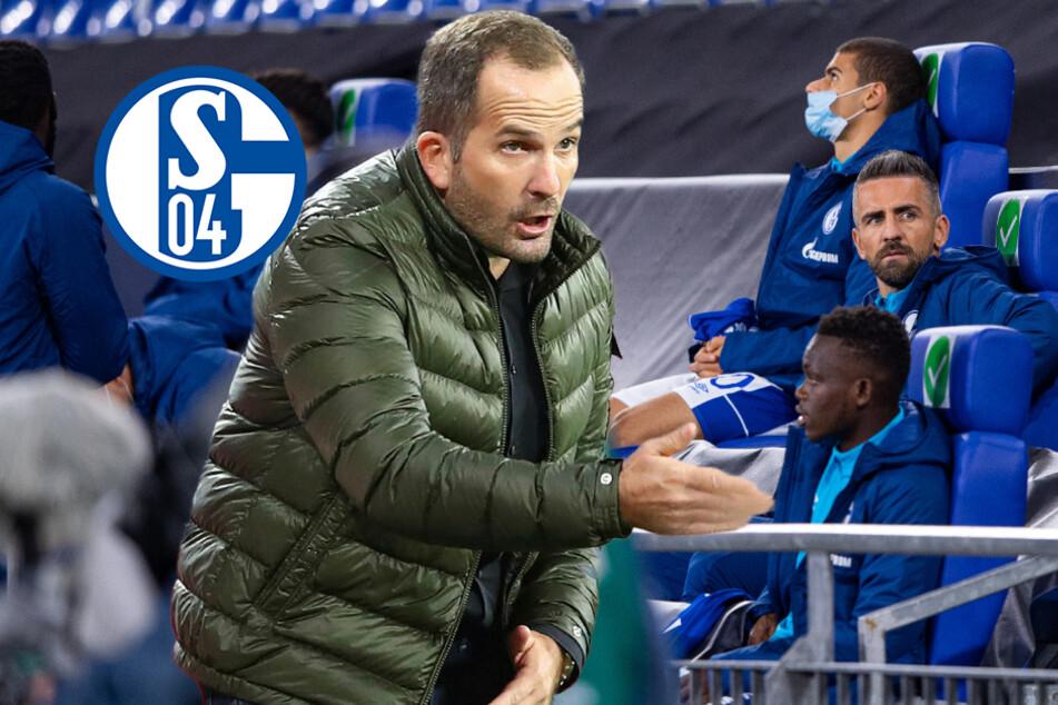 """Vedad Ibisevic rechnet mit Ex-Schalke-Trainer Manuel Baum ab: """"Er hatte ein Problem mit mir!"""""""