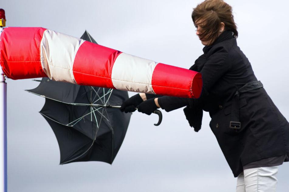Orkantief Sabine: Da hilft auch kein Schirm mehr. (Bildmontage)