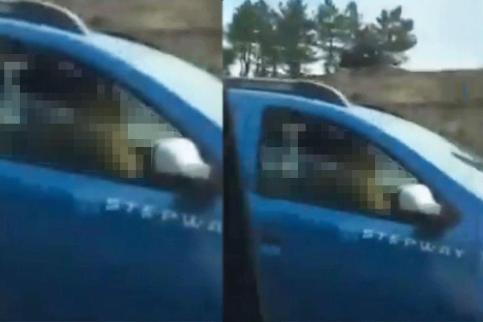 Fahrer staunt nicht schlecht, als er sieht, was dieses Paar während der Fahrt treibt und filmt es sofort