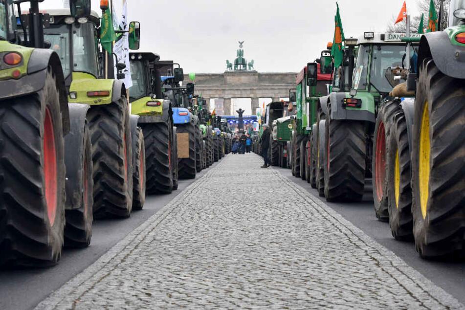 Traktoren stehen in Berlin bei der Demonstration für eine Agrarwende vor dem Brandenburger Tor. (Archivbild)