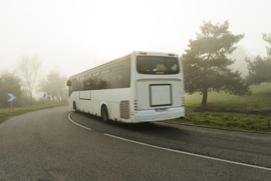 Der Busfahrer ließ die Frau einfach irgendwo im Wald raus. (Symbolbild)