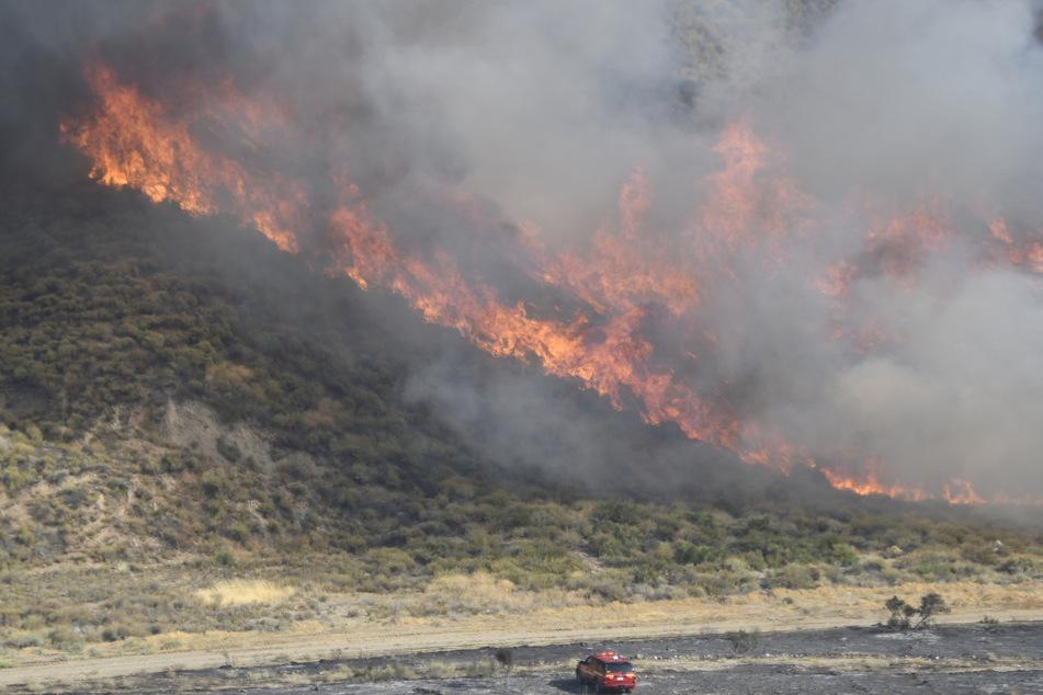 Die Brände wüten auf etwa 1100 Hektar.