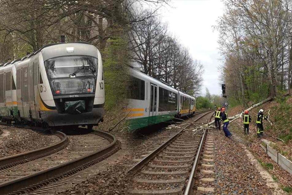 Sturm in Sachsen sorgt für Zug-Chaos! Pendler sitzen zwischen Dresden und Görlitz fest
