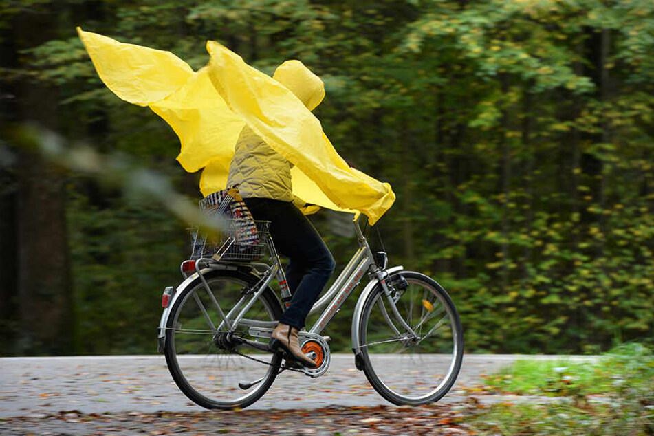 Im Norden Deutschlands wird es am Mittwoch windig und kalt.