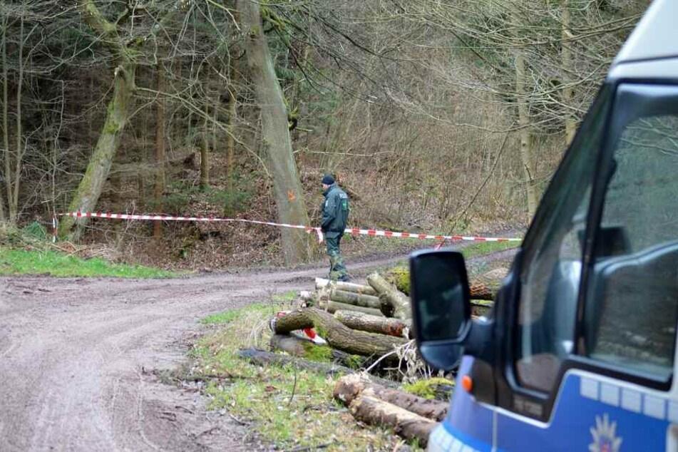 Die Polizei sperrte das Waldstück ab, brachte die Kadaver weg. (Symbolbild)